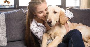 כמה עולה חיסון לכלב